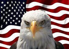 2X American Mad Bald Eagle US Flag Car Decal USA Patriotic Auto Bumper Sticker