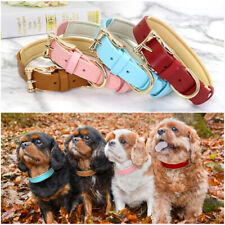Leather Dog Collar Soft Padded Dog Puppy Collar for Medium Large Dog walking