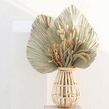 Natural Dried Flower Palm Fan Leaf Plant DIY Wall Hanging Wedding Party DIY NEW