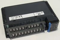Automation Direct D4-16NE3 12-24VAC/DC Input Module -missing cover- Free Ship!