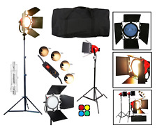 Redhead Continuous Lighting LED Tungsten  Professional Studio Spot Flood Light