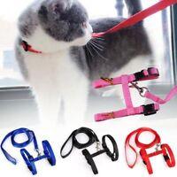 Pet Kitten Cat Nylon Adjustable Harness Lead Leash Collar Belt Safety Rope