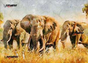 ACEO ATC Sketch Card - Elephant