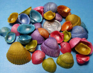TINY DYED ARK SEASHELLS-1/2 cup  Pearl finish - crafts,vase fillers, beach decor
