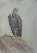 Heywood HARDY 1842-1933 ORIGINALE molto rara firmato Pittura Vulture-con provenienza