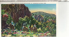 Horse Back Riders  near  Skyland  VA  Little Stony Mt   Unused Postcard 12054