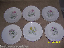 "Richard Ginori 6 Primavera Wildflower  8"" Salad  Dessert Plates"