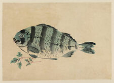 Japanese Drawing Reproduction: Fish - Fine Art Print