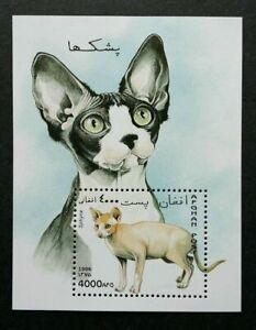 [SJ] Afghanistan Cats 1996 Children Pet Animal Fauna (miniature sheet) MNH