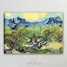 Van Gogh, Oliveto con nuvola bianca QUADRI MODERNI ARREDAMENTO STAMPE TELA ARTE