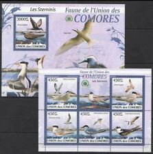 Comoros 2009 MNH MS+SS, Brown Noddy, Aquatic Birds, Water Birds (L2n)