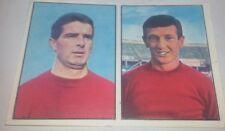 CALCIATORI PANINI 1965 / 66 - LIVORNO - MANSERVISI / BALLERI -NUOVA-NEW-