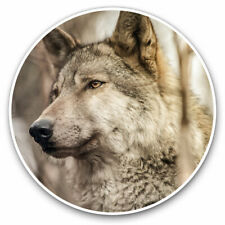 More details for 2 x vinyl stickers 30cm - wild grey wolf wolves dog dogs animal cool gift #24447