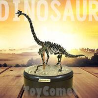 Brachiosaurus Dino Dinosaur Skeleton Fossil 4D 3D Puzzle Model Toy