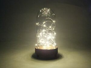 LED Glass Dome Light W5.3*D5.3*H10.8 inch/Personalize/Wood/Mood/Tabletop/Unused
