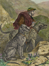 DEERHOUND CHARMING DOG GREETINGS NOTE CARD TWO BEAUTIFUL DOGS AND MAN IN HILLS