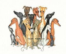 Whippet greyhound  dog Watercolour/ink Painting by Bridgette Lee.