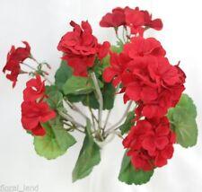 Bush Geranium Flowers & Floral Décor