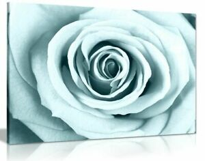 Duck Egg Blue Rose Canvas Wall Art Picture Print