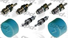 A/C System Valve Core and Cap Kit-GAS Global 1311684