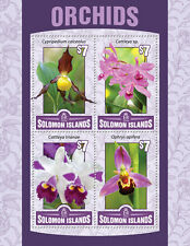 Solomon Islands 2016 MNH Orchids Cattleya Ophrys 4v M/S Flowers Stamps