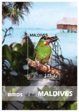 Maldives - Birds Stamp - Souvenir Sheet MNH
