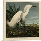 ARTCANVAS Snowy Heron - White_Egret Canvas Art Print by John James Audubon