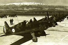 WW2 - Aviation - Morane Saulnier 406 du GC 1/7 des Forces Vichystes à Rayak 1941