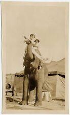 CIRCUS ELEPHANT   PERFORMERS VINTAGE PHOTO