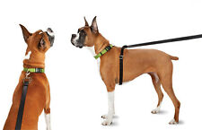 Thunderleash -'no-pull'retractable dog lead, make walkies less stressful, MEDIUM