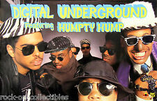 Digital Underground 1990 Sex Packets Humpty Hump Original Promo Poster