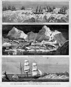 NAUTICAL WHALING FLEET SHIPS STUCK IN ICE PACK ARCTIC PERILS CAMP ON AN ICEBERG