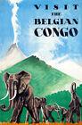 "Retro Travel Poster *FRAMED* CANVAS PRINT Belgian Congo Elephant 16""x12"""