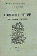 Tirocco - Il Ranuncolo e l'Ortensia: Varietà Coltivazione -Battiato 1928 Catania