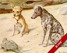 Chihuahua & Mexican Hairless Dogs Pet Dog Art Painting Print On Real Canvas