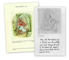 OLD MRS RABBIT ORIGINAL DRAWING & FINAL PUBLISHED IMAGE BY BEATRIX POTTER 1902