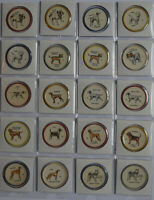 1960's  Almost set of 43 of 60 Dog Coins Anonymous back Variation