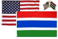 Wholesale Combo Usa & Gambia Country 2x3 2'x3' Flag & Friendship Lapel Pin