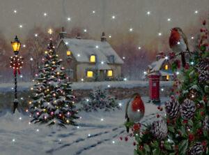 Fibre Optic LED Robins Canvas by Richard Macneil 40cm x 30cm