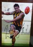 Robert Campbell AFL Hawks premiership player signed 6x4 photo