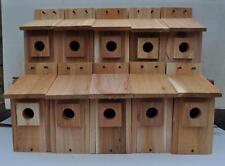 10 WESTERN BLUEBIRD BIRD HOUSES NEST..HOLE SIZE 1 9/16 ...free shipping handmade