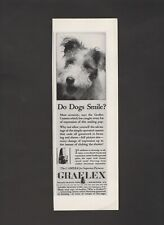 1931 Graflex Camers Do Dogs Smile? Folmer Rochester,NY  Vintage Print Ad Y31