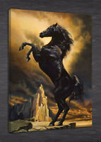 POPT018 100% hand painted Animal Horse Oil Painting Modern home on canvas Art