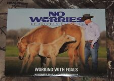 Clinton Anderson Working with Foals November 2016 DVD