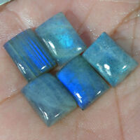 100% Natural Labradorite Blue Fire Cushion Cabochon Loose Gemstone 5 Pcs Lot