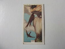 Sunlight soap card 'British birds and their nests'   x    (*L)