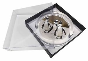 Penguins on Sandy Beach Glass Paperweight in Gift Box Christmas Presen, AB-100PW