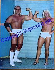 Hulk Hogan 11x14 Rare Vintage Wrestling Photo Wwf Rookie 70s Legend WWE