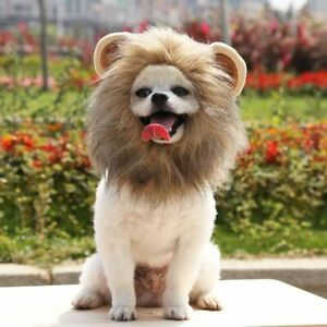Creative Cute Pet Costume Lion Mane Wig Hat for Dog Cat Funny Dress Up Pet Toy*
