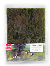Busch Thinning Grass Pad Early Summer Cover Scenery
